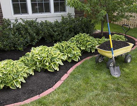 Implantação de Manutenção de Jardins